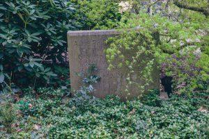 Sfeerbeeld oud graf